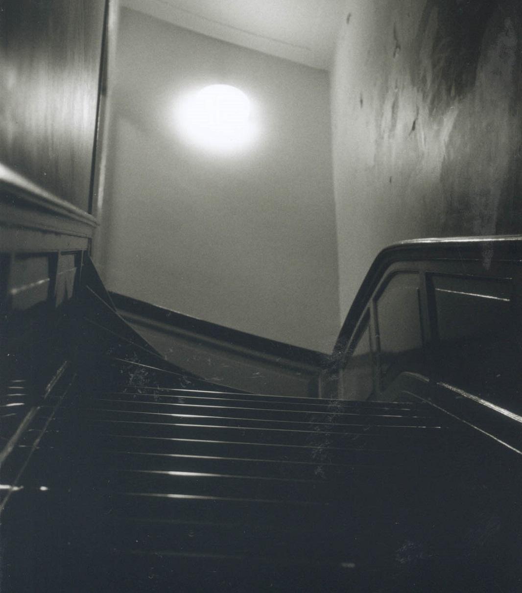 Stairway at Utrecht University Library (photo by Andrea Hajek)
